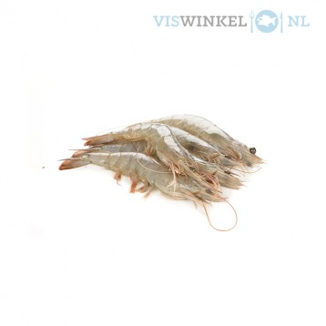 hollandse garnaal ongepeld